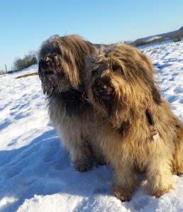 pauli und herta im winter huschu