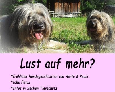 quasselstrippe newsletter_Herta und Paule_