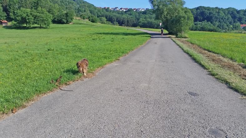 herta und die jogger2