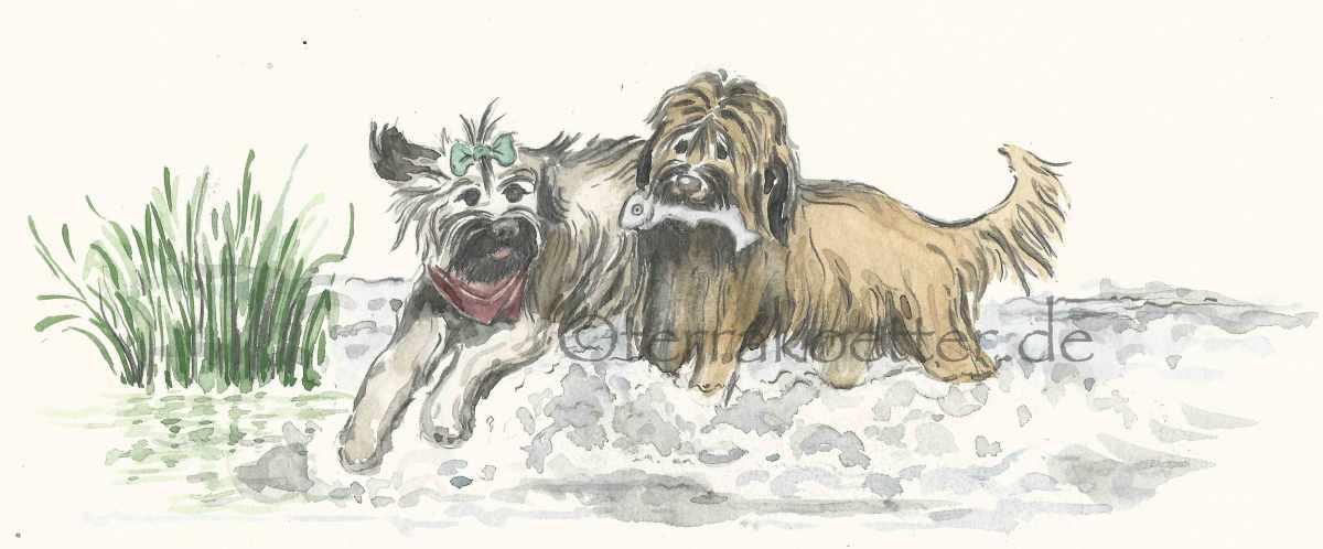Lou und Coco auf großer Reise – oder wie ein Kinderbuch entsteht.