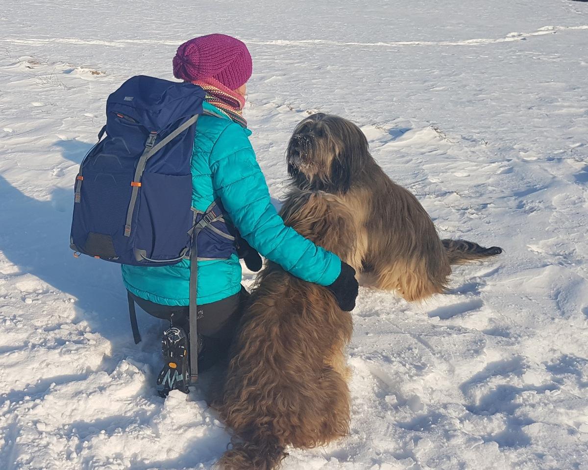 Der Hund – der beste Freund des Menschen